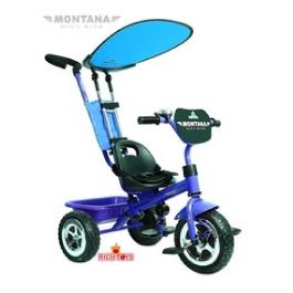 3-х колесный велосипед Rich Toys Lexus Trike Original MONTANA Blue