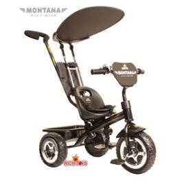 3-х колесный велосипед Rich Toys Lexus Trike Original MONTANA Black